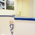 """Serie A, comunicato ufficiale del Brescia: """"Vorremmo evitare la ripresa del campionato, quasi tutti i giocatori hanno accettato la riduzione degli stipendi"""""""