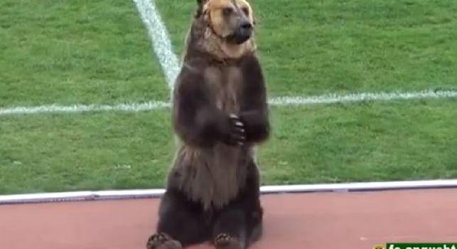 Russia, test per la mascotte dei Mondiali: orso consegna il pallone all'arbitro e incita i tifosi [VIDEO]
