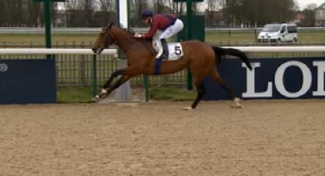 Ancelotti vince anche nell'ippica: il suo cavallo 'Il Pittore' si impone a Longchamp