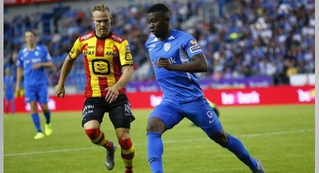 Napoli-Genk, i belgi prendono gol da nove partite consecutive! Per il nuovo allenatore Wolf solo una vittoria da quando è arrivato