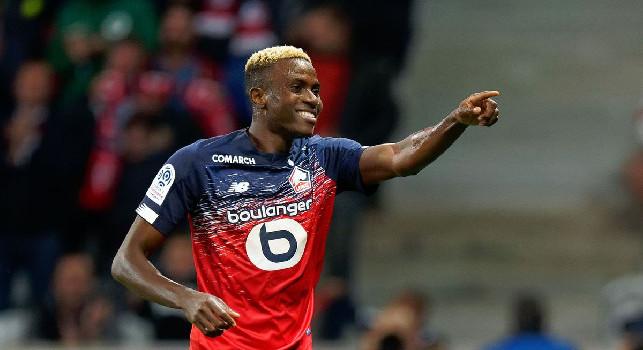 Lille, il presidente: Offerte da club di tre campionati per Osimhen, respinte due proposte per lui a gennaio