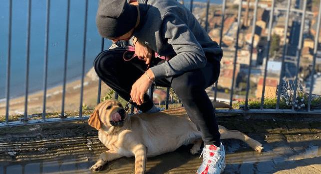 Fabian Ruiz, giornata libera per gli azzurri: Godendomi il sole e la bellezza di Napoli [FOTO]